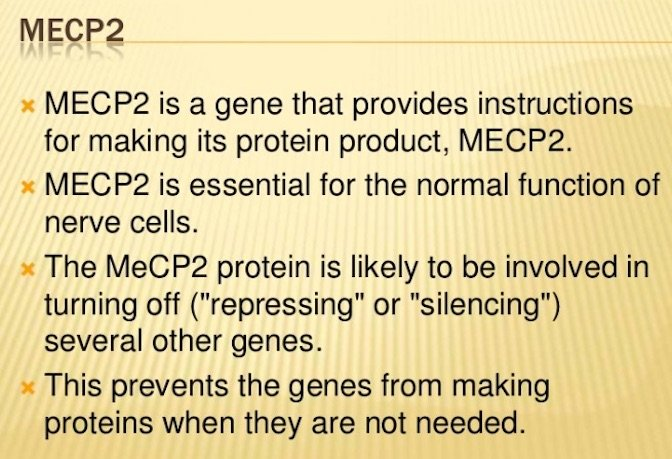 Role of MECP2 Gene