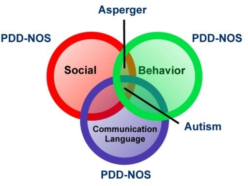 Overlap between Asperger's and PPD NOS - key types of autism