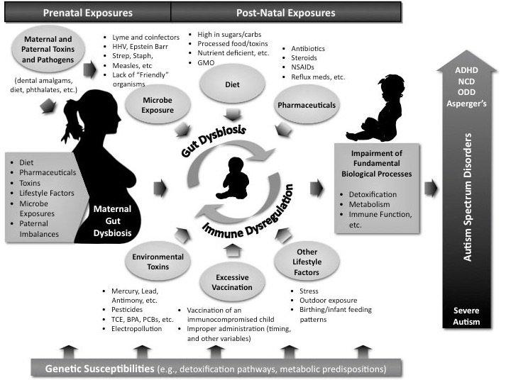 Etiology of Autism