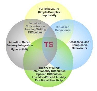 Tourette Syndrome Symptoms