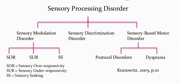 Types of Sensory Integration Disorder
