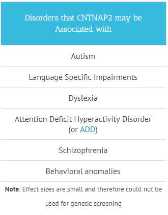Disorders that CNTNAP2 may be Associated with