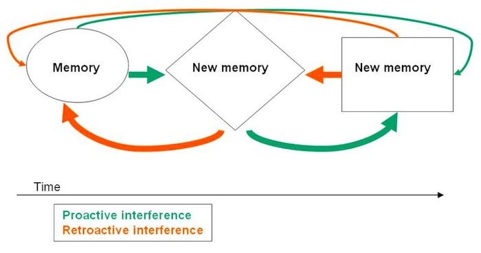 interference theory for Autism