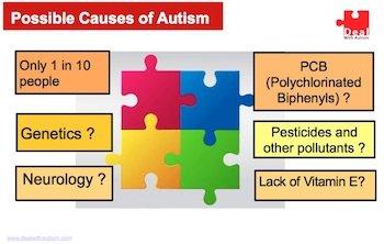 Autism PDF slide 6