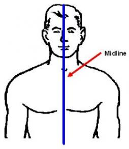 body midline